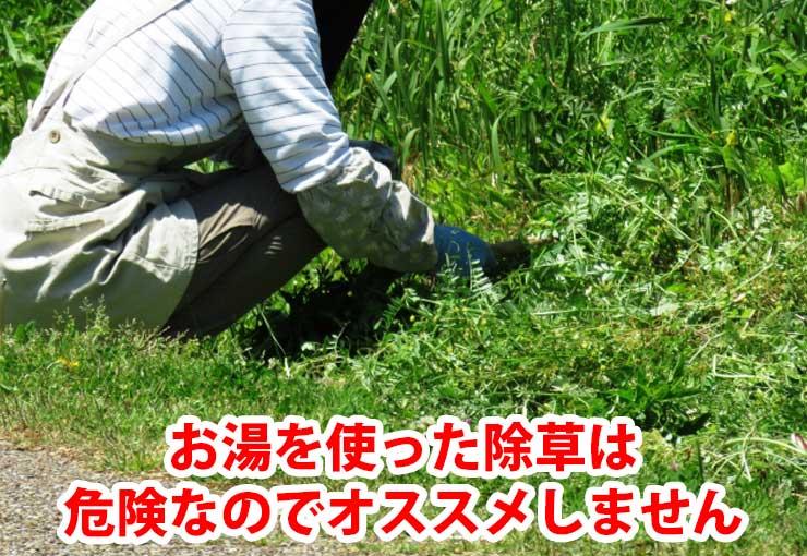 お湯を使った除草は危険なのでオススメしません