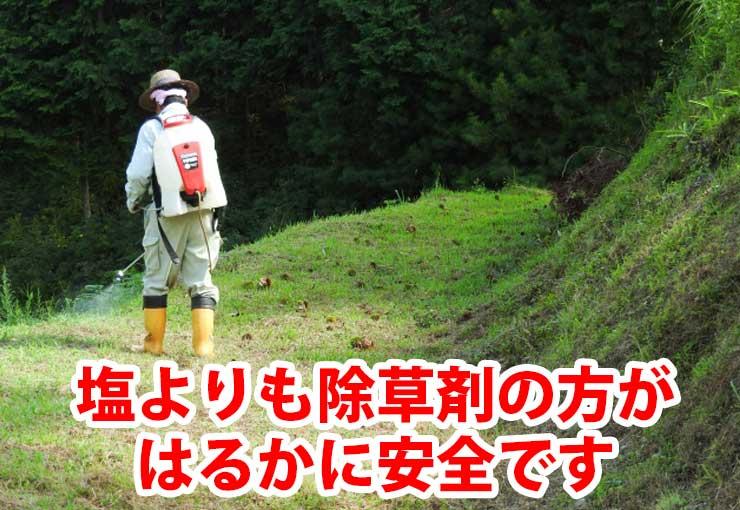 塩よりも除草剤の方がはるかに安全です