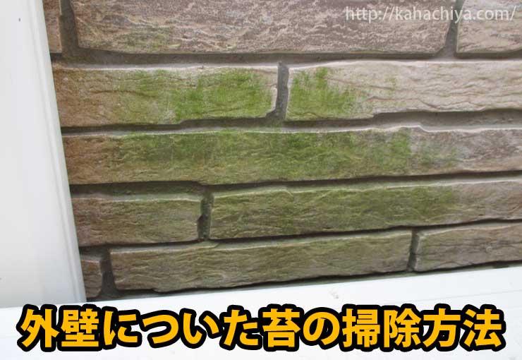 外壁の苔を掃除する方法