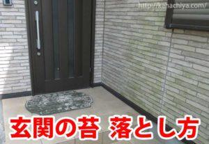 玄関 苔 掃除