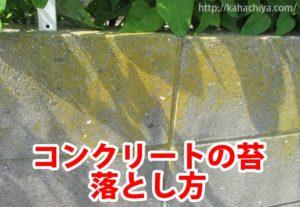 コンクリート苔 掃除方法
