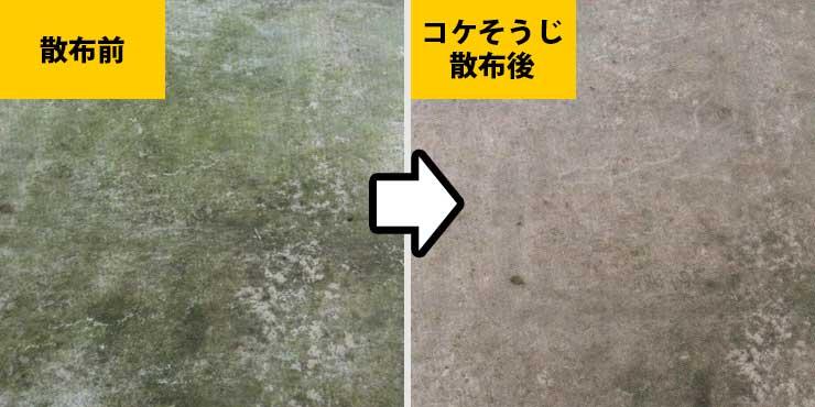コンクリートの苔駆除の様子