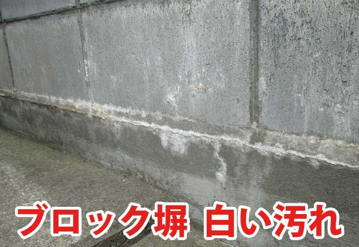 ブロック塀の白い汚れ