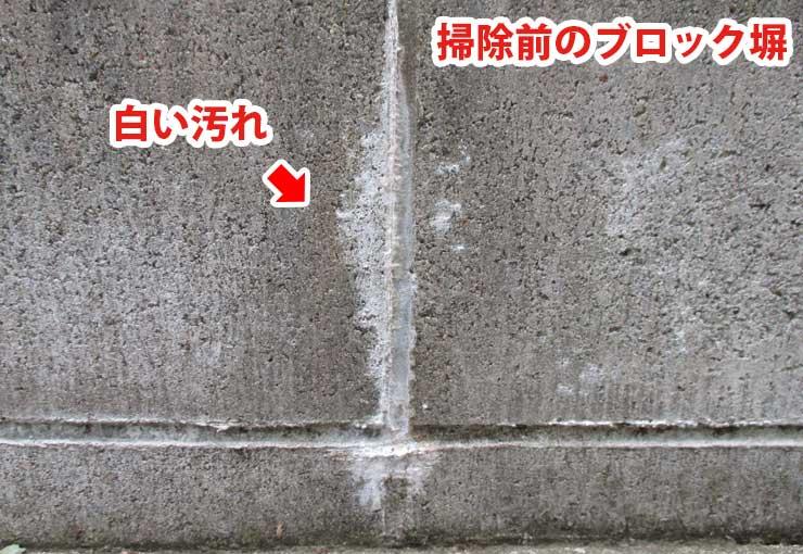 掃除前のブロック塀