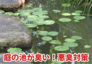 池の悪臭対策、ヘドロ対策