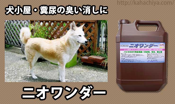 犬の糞尿の臭い消しにニオワンダー