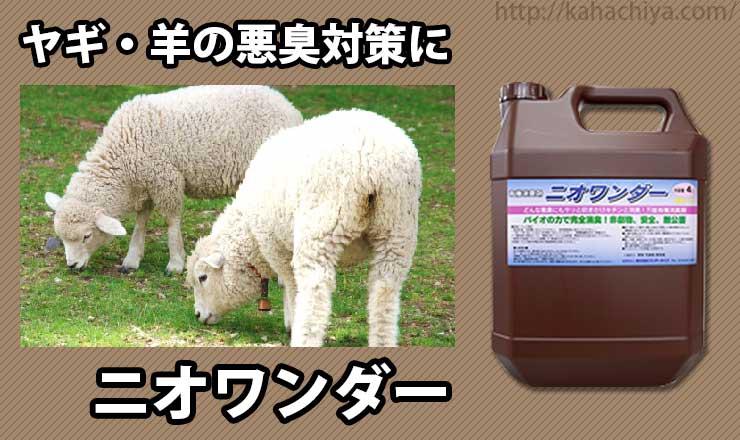 ヤギ、羊の悪臭対策にニオワンダー