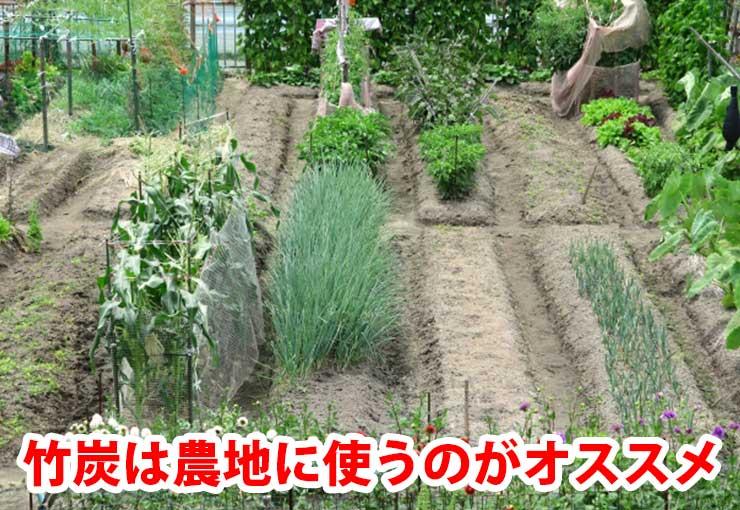 竹炭は農地に使うのはオススメ