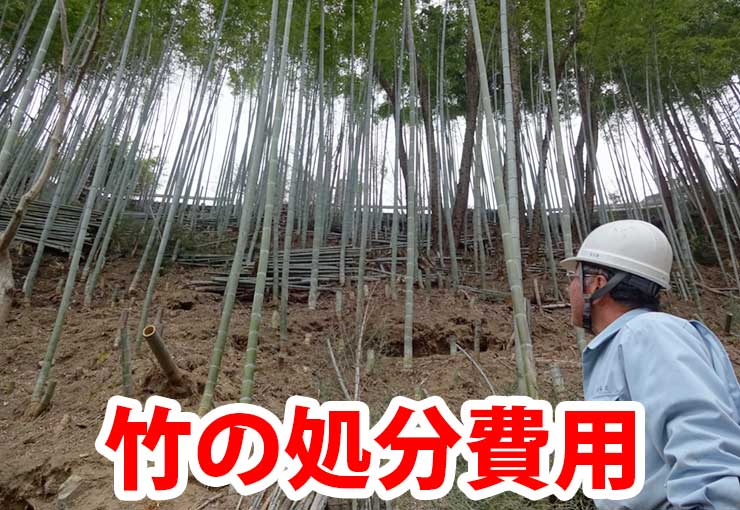 竹の処分費用