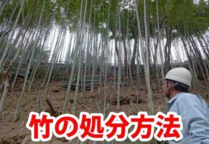 竹の処分法