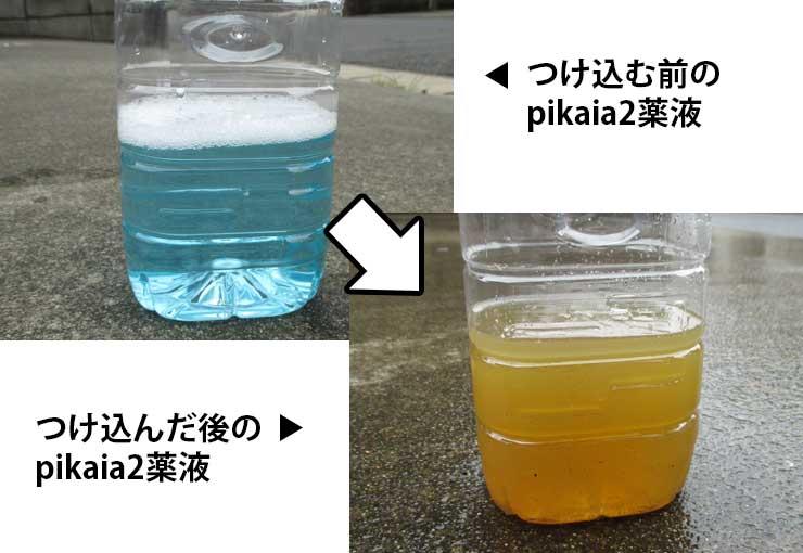 つけ込む前と後のピカイア2薬液