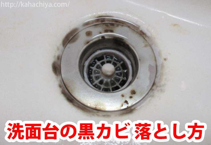 洗面台の黒カビ 落とし方