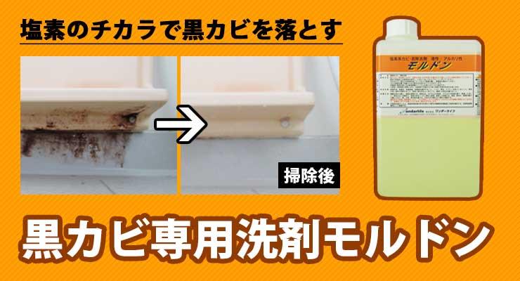 黒カビ専用洗剤モルドン