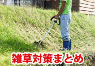 雑草対策まとめ