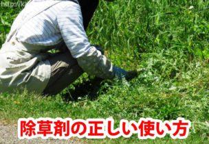除草剤の正しい使い方
