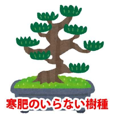 寒肥のいらない樹種