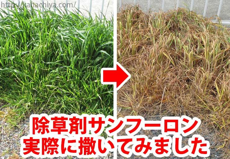 サンフーロン 除草 剤