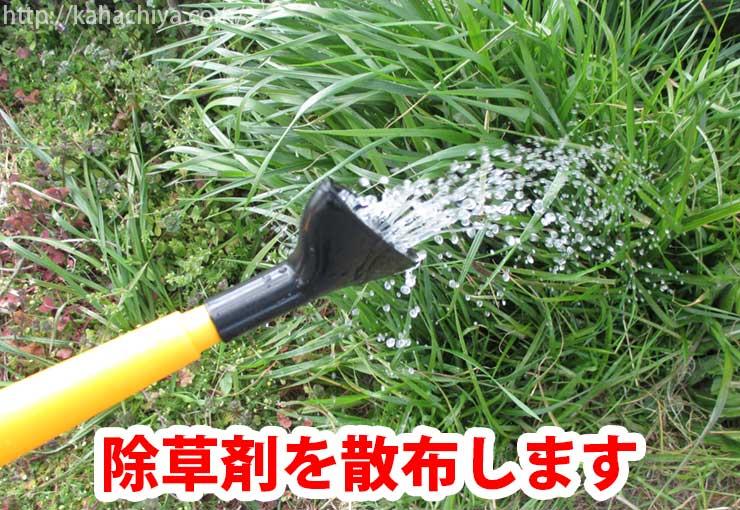 除草剤を散布する