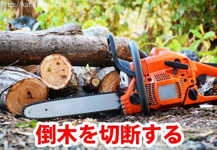 倒木を切断する