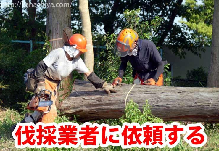伐採業者に依頼する