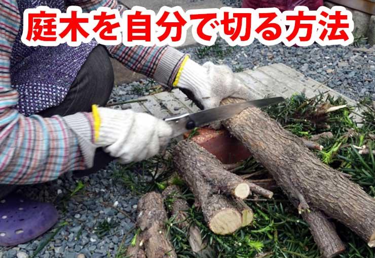 庭木を自分で伐採する方法