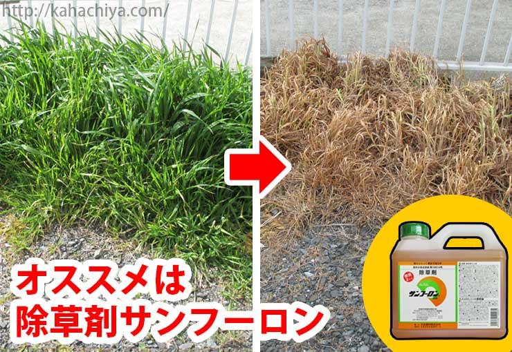 除草剤サンフーロンがオススメ