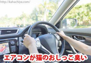 車のエアコンが猫のおしっこ臭い