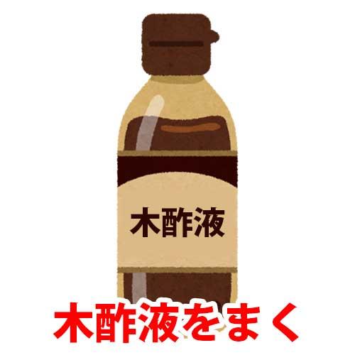 木酢液をまく