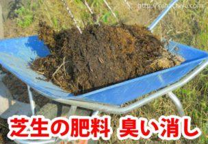 芝生 肥料 臭い消し