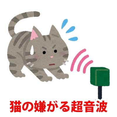 猫の嫌がる超音波